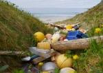 Как очистить город от мусора
