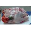 Мясо птицы,  куры,  Мясо ЦБ,  окорочка,  яйцо,  оптом.