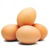 Яйцо С1